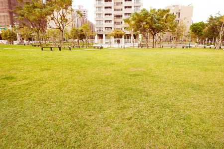 urban environments: Open Urban Green Park Space in front of Residential Buildings