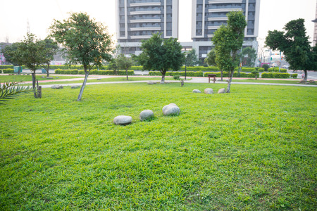 Open Urban Green Park Space in front of Residential Buildings photo