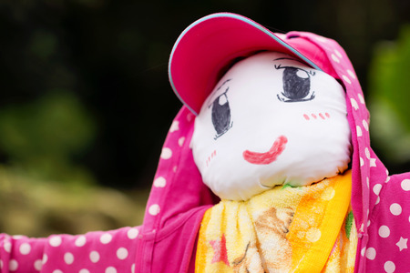 scarecrow: A cute scarecrow is wearing pink jacket and hat Stock Photo