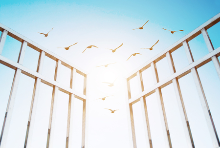 keys to heaven: birds fly over the open gate, concept of success and freedom