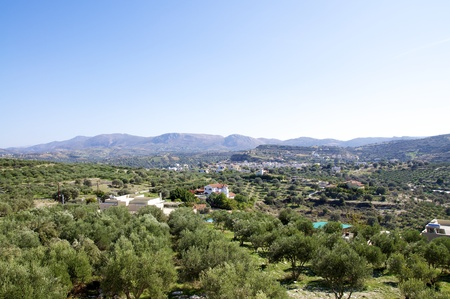 realms: pitsidia, a greek mountain village in the south of crete