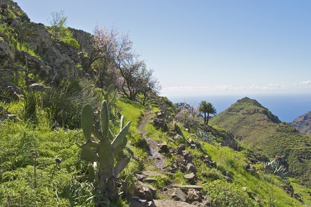 Hiking on La Gomera, Canary Islands