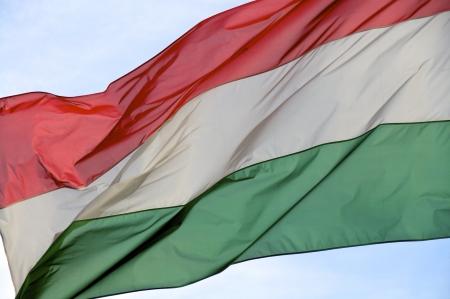 Die Nationalflagge von Ungarn im Konsulat in Hamburg Standard-Bild - 15757012
