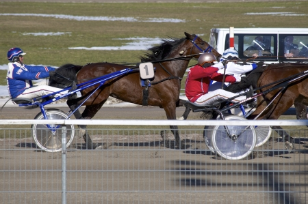 HAMBURG, GERMANY - APRIL 01, 2013. Trotting on a harness racing track in Hamburg - Bahrenfeld
