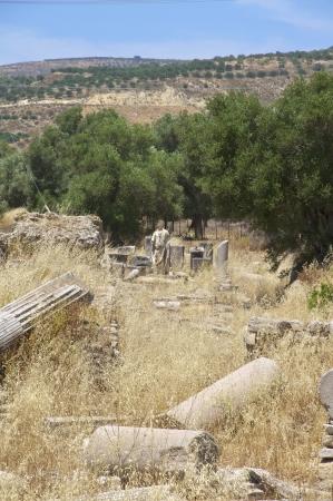 Apollon Temple of Gortyn on Crete  Gortyn was a Minoan settlement in the southwestern part of Crete Stock Photo - 25096909