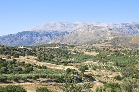 ida: Landscape, Mountains and Olive Groves in south Crete and view to the Ida Mountains from the south side of Crete