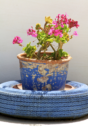 Flowerpot with car tires on the terrace  on Crete photo