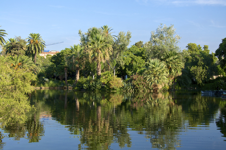 The Parc de la Ciutadella, established during the mid-19th century, located in the heart of Barcelona, has a very beautiful garden landscape photo