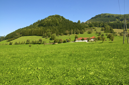Landscape with Farmhouse in the Enns valley in Austria. The Enns valley is one of the most beautiful Landscapes in Upper Austria. The Farmhouse stands in Groraming.  Editorial