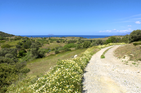 libyan: South Crete in April. Rain was falling and the vegetation is everywhere green. In front the Libyan open sea with the island of Paximadia. It is one of the most beautiful times on the Island