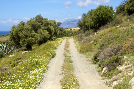 South Crete in April. Rain was falling and the vegetation is everywhere green. It is one of the most beautiful times on the Island. In the landscape, you have fields and olive grooves when you cross the island