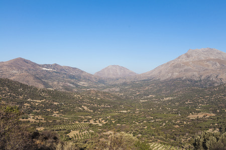 olive groves: On the old road to Rethymnon. Landscape, Mountain and Olive Groves in south Crete. Agriculture and Olive Groves determine the picture on the Island. On the left side in the mountains the village Melambes
