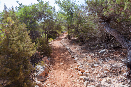 spite: Hiking trail on Gavdos, Greece. Footpath to Cape Trypiti the southernmost point of Europe. Gavdos is, in spite of the southernmost greek Iceland and the southernmost point of Europe, a very green Iceland