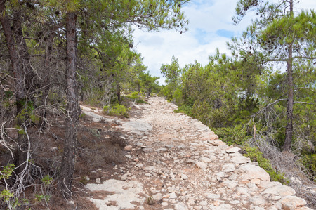 spite: Hiking trail on Gavdos, Greece. Footpath to lighthouse at the north west coast. Gavdos is, in spite of the southernmost greek Iceland and the southernmost point of Europe, a very green Iceland Stock Photo