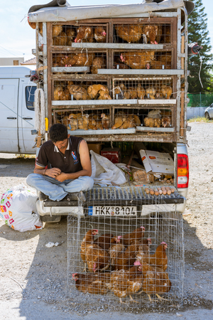 Man sells chicken, hens and chicks, in front of his car. Editorial