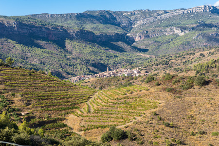 The Comarca Priory is a famous wine growing area where the prestigious Wine of the Priorat and Montsant is produced. In the background the village of La Vilella Alta. Wine grows here since the 12th century