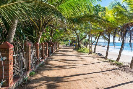 Beach road under palm trees. The Vijaya Road leads along the Medaketiya beach and runs to the Rekawa lagoon in the east of Tangalle. Stockfoto - 150296484