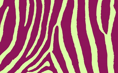 Colorful Animal skin textures of zebra wild pattern Vector