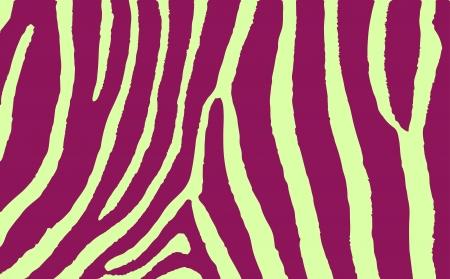 Colorful Animal skin textures of zebra wild pattern