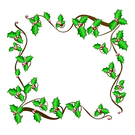 ilex aquifolium holly: Christmas holly frame - vector background  The vector illustration of beautiful christmas holly branch, Winter Festival Brushes,  eps 10 Illustration