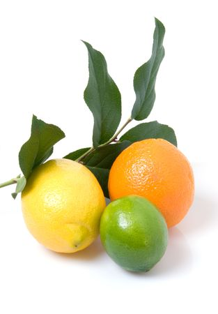 Lemon, orange, lime, and lemon leaves Stock Photo - 5422786