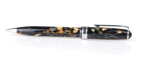 Ballpoint pen with tortoise shell finish Banco de Imagens