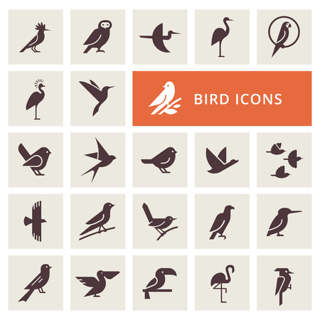 Vector birds icon set in gray color. Isolated items birds. Perfect for illustration, decoration and print. Illustration