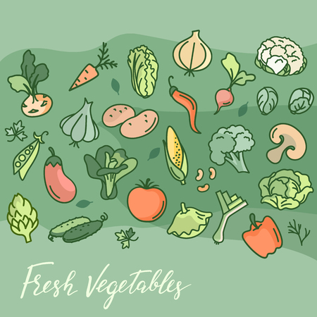 Zbiór różnych gryzmołów, ręcznie rysowane proste szkice różnych rodzajów warzyw. Ilustracja wektorowa odręczne na białym tle. Jedzenie wegańskie. Ilustracje wektorowe