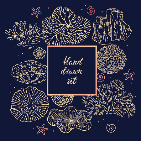 Photo Frame. Design templates for postcards, business cards, covers, banners, with illustrations of corals. Vector flyer with corals around the text and wavy lines for design. Deep sea background. Stock Photo
