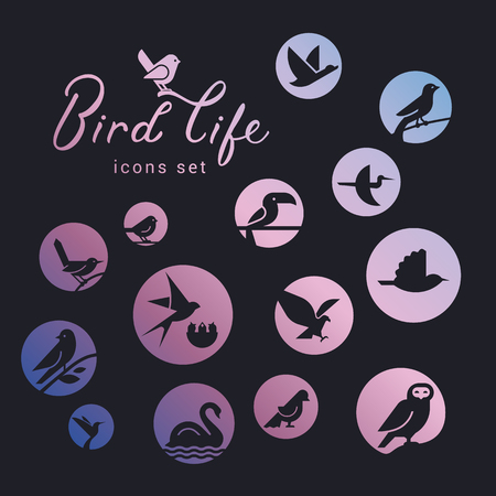 Vector icon set of icons inscribed in a circle filled with a gradient on the theme of wild bird life. Bird wounds in linear style. Design concept.  イラスト・ベクター素材