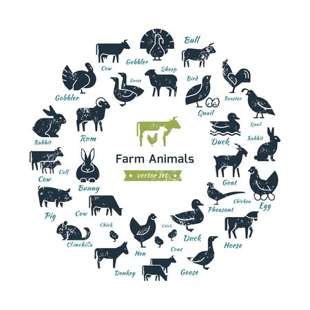 Circular vector icon set in a flat style of farm animals silhouettes. Circular concept of farm animals. With place for text.