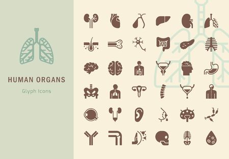 Large vector set of icons on the medical theme of internal human organs made in a flat style in two different colors. Illustration