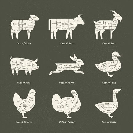 Set of butchery logo. Farm animals silhouettes collection for groceries, meat stores, packaging, and advertising. Beef, pork, chicken, milk labels. Vector illustration.