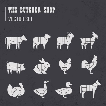 Meat cuts set. Diagrams for butcher shop. Scheme of chicken, beef, pork, etc. Animal silhouettes. Guide for cutting. Vintage vector illustration.