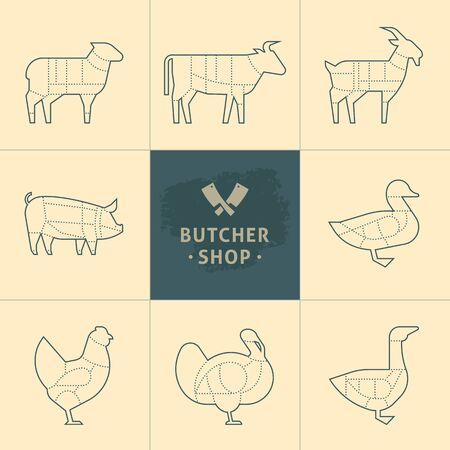 Set a schematic view of animals for the butcher shop. Cow and pork, cattle and pig, chicken and lamb, beef and rabbit, duck and swine, goose and turkey, meat illustration. Vector meat cuts.