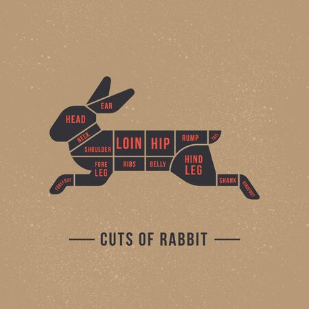 The diagram of cutting a rabbit or hare made in a vector in a flat vintage style against the background of old paper and a signature at the bottom of an isolated illustration. Иллюстрация
