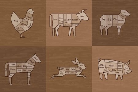 The old restaurant is a meat menu template. American scheme of pork cutting, chicken cuts and beef cuts, horse, rabbit, hare hand-drawn vector illustrations.