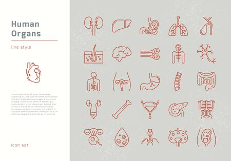 Large set of linear vector icons of human internal organs with signatures. Suitable for print, web and presentations. Ilustração
