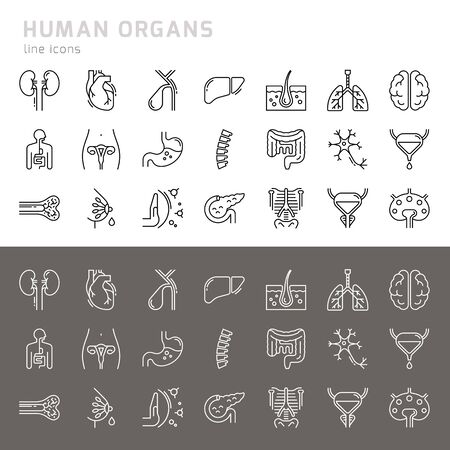 Set of 24 vector icons of internal human organs in a glyph style isolated with background of seamless medicine pattern.
