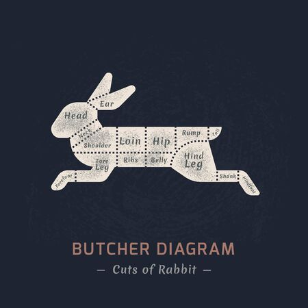 The diagram of cutting a rabbit or hare made in a vector in a flat vintage style against the background of old paper and a signature at the bottom of an isolated illustration.