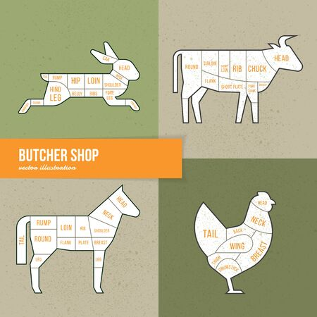 Vector scheme cuts beef, rabbit, horse and chicken on hand-drawn illustrations in vintage style for a butcher or restaurant menu. Ilustração