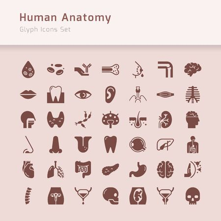 Set of 24 vector icons of internal human organs in a linear style isolated with background of seamless medicine pattern. Ilustracja