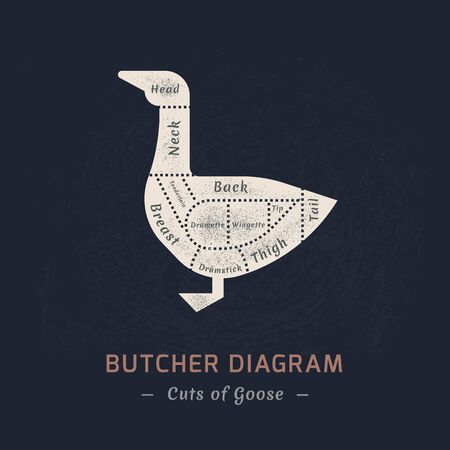 Cutting duck or goose meat painted in a vector in a flat retro styles isolated against the background of old paper for the butchers shop or restaurant menu.