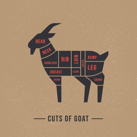 Cutting goat meat painted in a vector in a flat retro styles isolated against the background. For the butchers shop or restaurant menu.