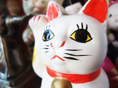 Lucky Cat Banque d'images - 107385407