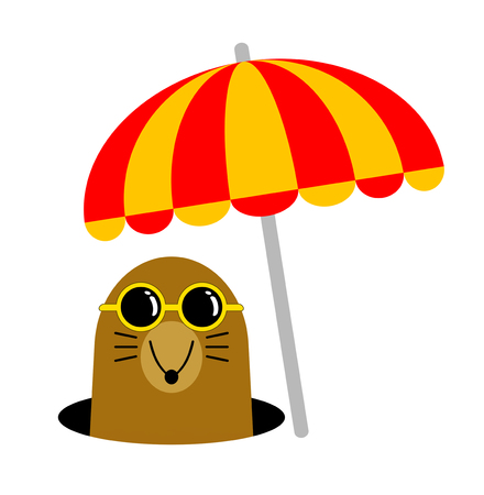 There is a mole under the parasol.