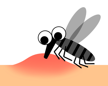 A mosquito is absorbing blood.