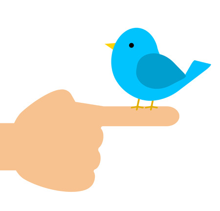 A blue bird is staying in a finger. Stock Photo