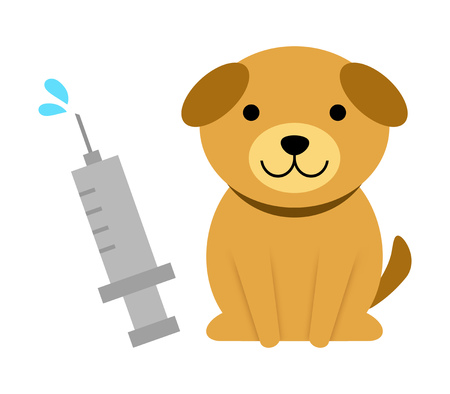 Injection for dogs