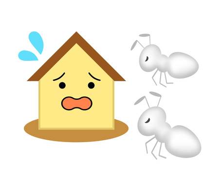 A house suffers termite damage.